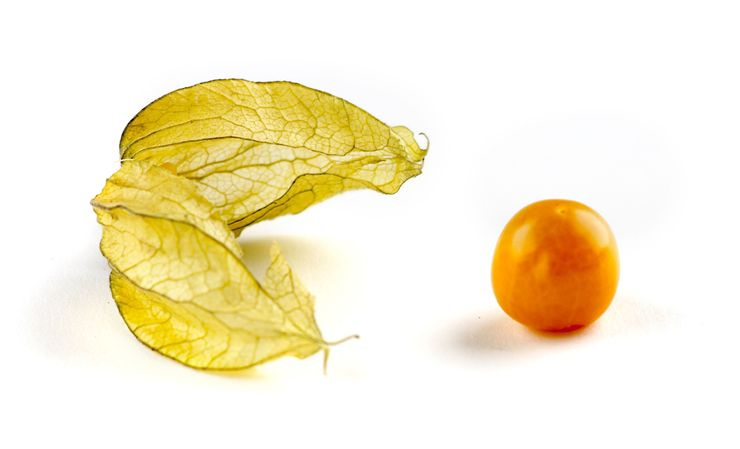 Picture Of Physalis For Chinese Deserts